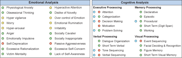 brain map Cognitive and Emotional Checklist